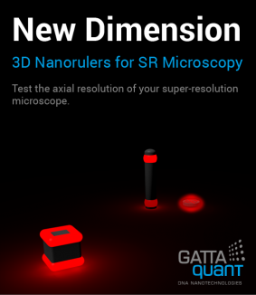 3D Nanorulers for SR Microscopy
